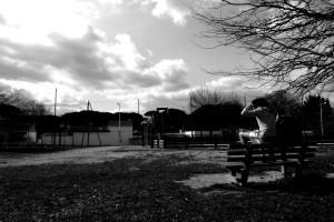 photo_FEU_VERT